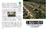 3月号白菜 福島の食卓.jpg