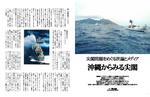 沖縄からみた尖閣.jpg